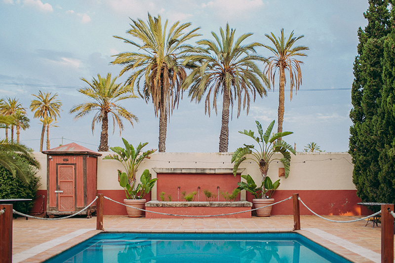 pisina con palmeras en-Elche