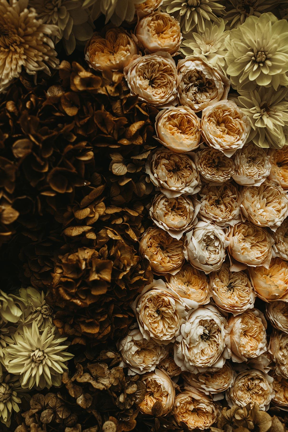 boda de invierno backdrop de flores rosas amarillas hortensias marrones